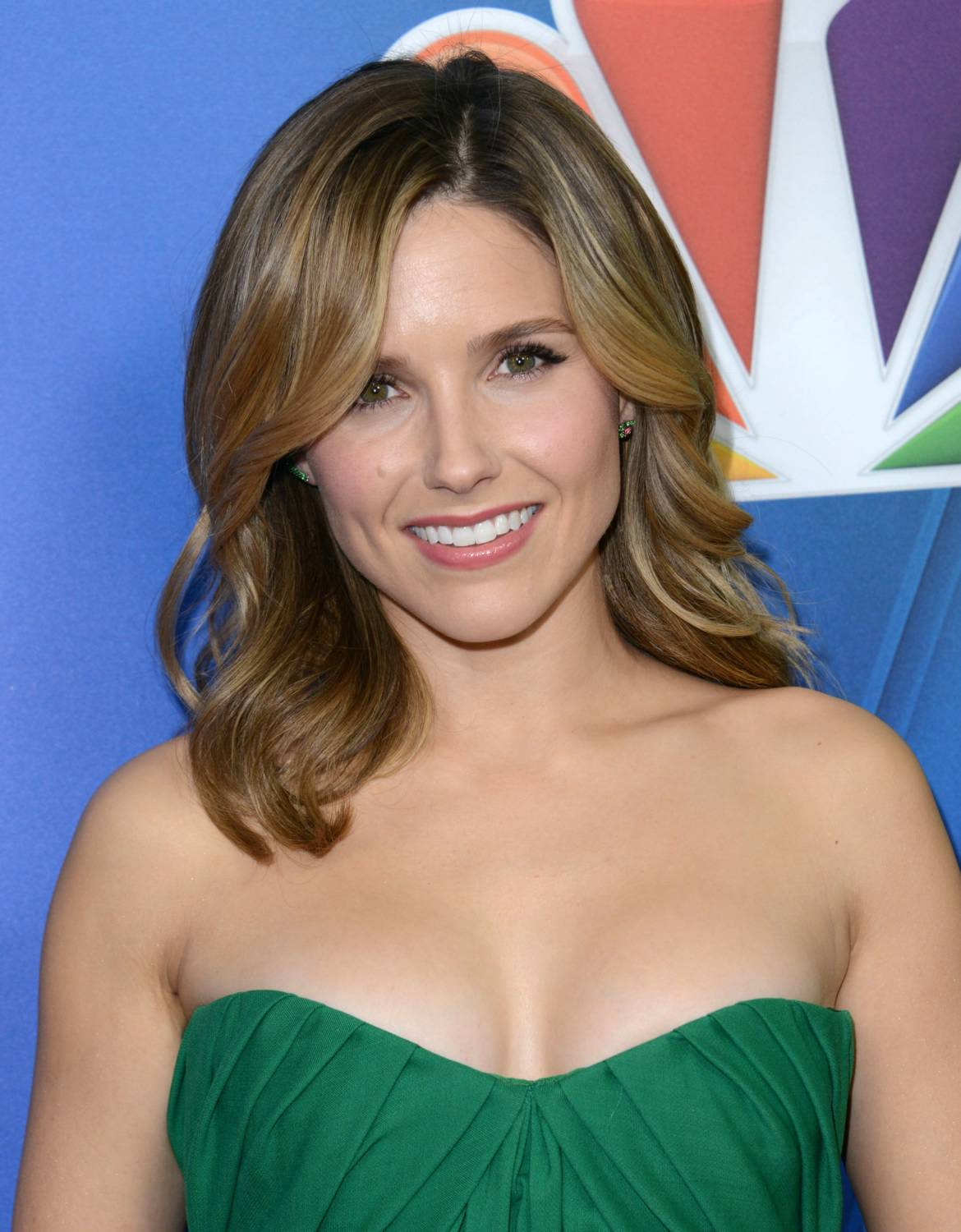 Sophia Bush Family Photos, Husband, Age, Net Worth, Parents