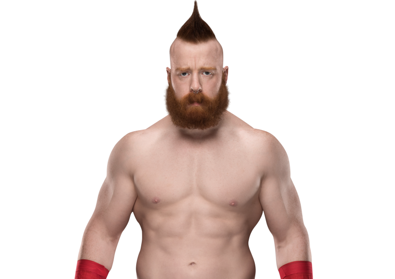 WWE Sheamus Family Photos, Wife Name, Age, Height And Weight