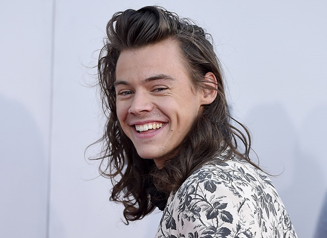 Harry Styles Family Photos, Wife, Daughter, Age, Height, Sister, Brother