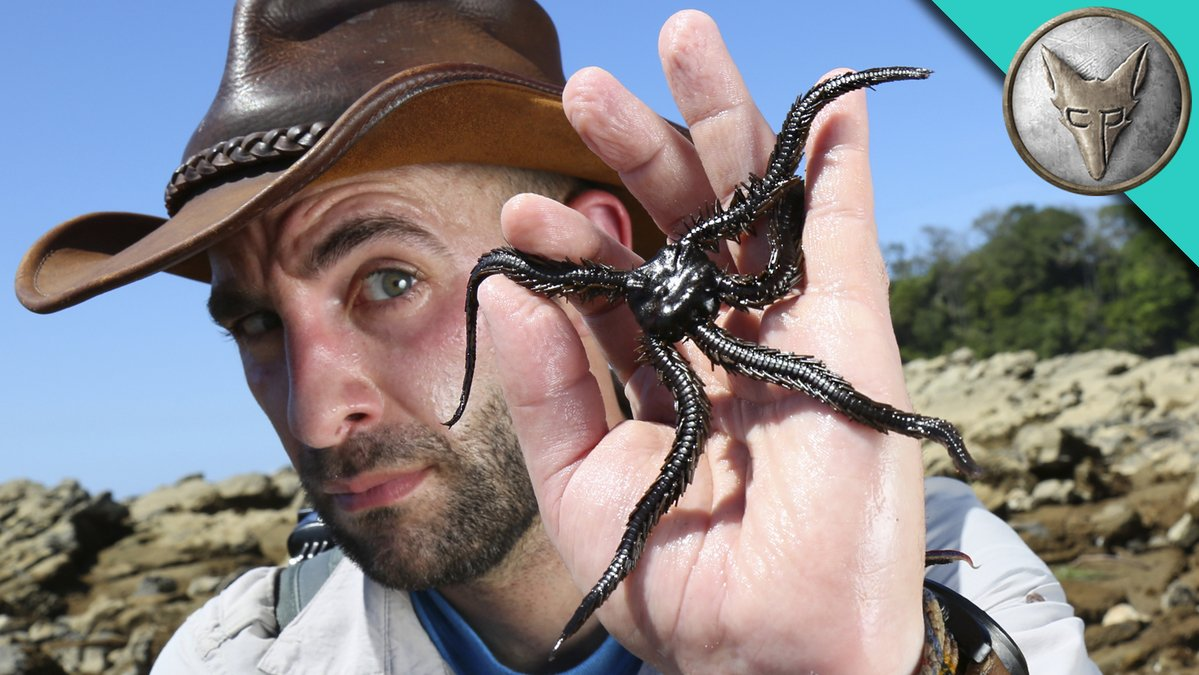 Coyote Peterson Family Pictures, Wife, Daughter, Age, Real Name